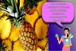 Как и сколько в домашних условиях можно хранить ананасы, правила и сроки