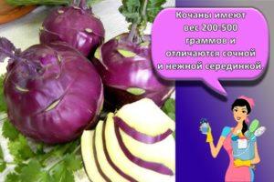 Как правильно хранить капусту кольраби и способы в домашних условиях