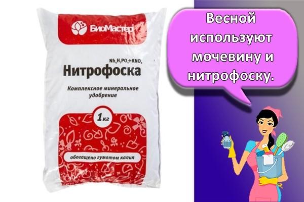 Весной используют мочевину и нитрофоску. П