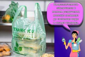 Правда и ложь про биоразлагаемые пакеты для мусора и из чего изготавливают