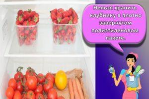 Как правильно хранить в холодильнике клубнику, лучшие способы и советы