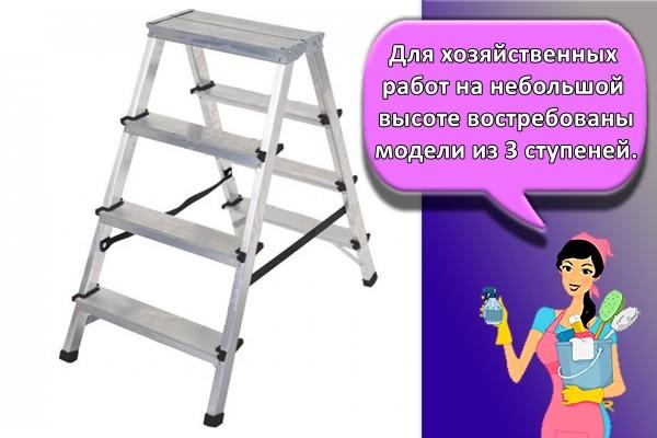 ля хозяйственных работ на небольшой высоте востребованы модели из 3 ступеней.
