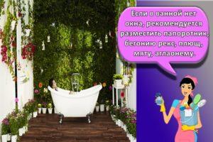 Выбор цветов для ванной комнаты без окон и правила декора своими руками