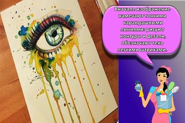 Вначале изображение намечают тонкими карандашными линиями: рисуют контуры и детали, обозначают тень легкими штрихами.