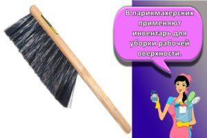 Разновидности щеток-сметок и для чего они нужны, как выбрать изделие