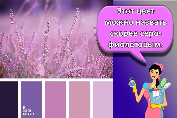 Этот цвет можно назвать скорее серо-фиолетовым.