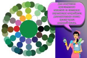 Как при смешивании красок можно получить зеленый цвет и топ-8 его оттенков