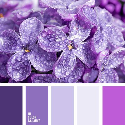 Бледно-фиолетовый