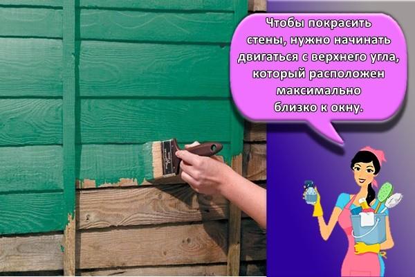 Чтобы покрасить стены, нужно начинать двигаться с верхнего угла, который расположен максимально близко к окну.