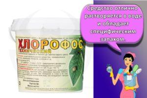 Инструкция по применению и состав инсектицида Хлорофос, нормы расхода